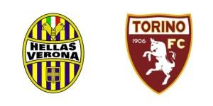 2014-02-17_verona-torino2