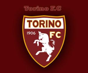 Torino-FC