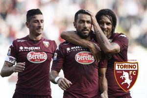Torino vs Udinese - Serie A Tim 2014/2015